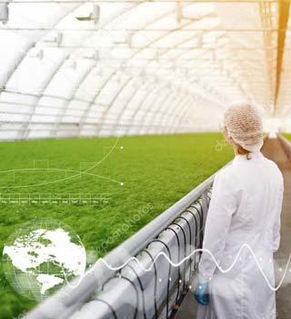 Experto controlando cultivos