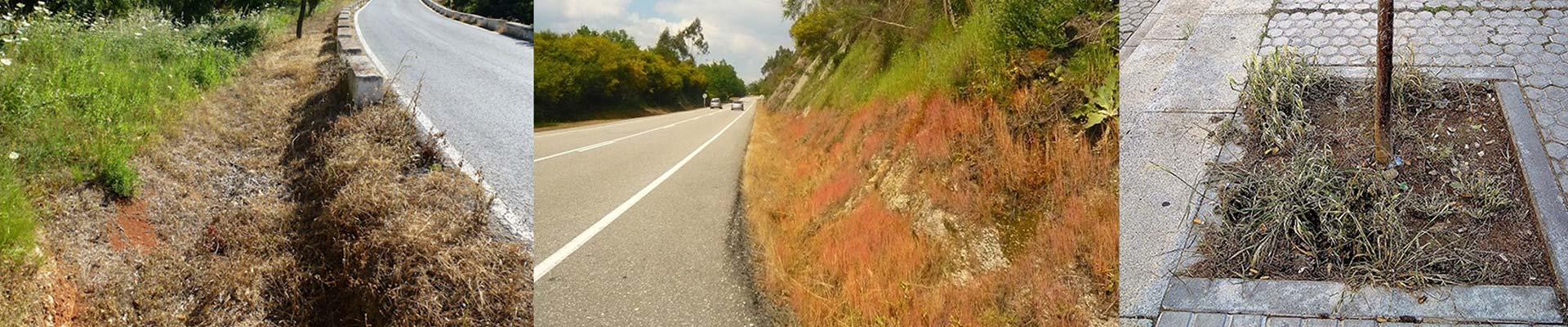 Aplicaciones de nuestro herbicida ecológico